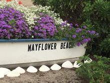 Mayflower 1.JPG