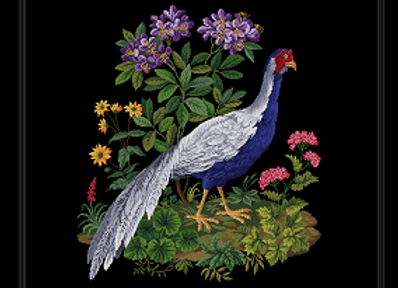 Flowers Silver Pheasant on Stretcher