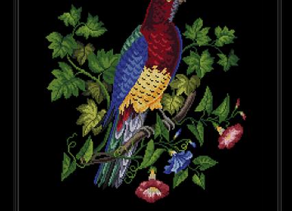 Berlin  Floral Parrot