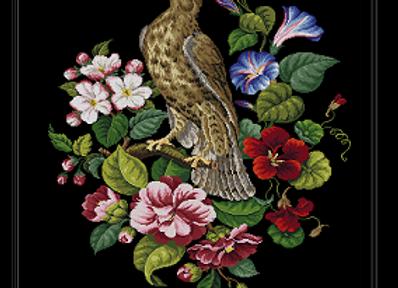 Antique Hawk and Nasturtiums