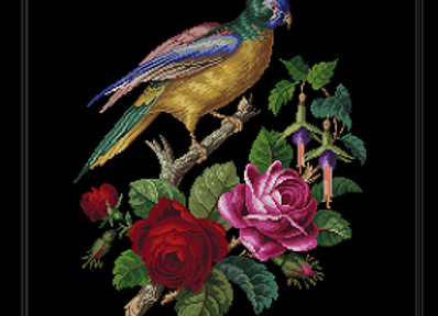 Roses & Parrot