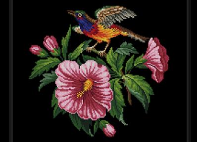 Bluethroat bird and glorious Hibiscus