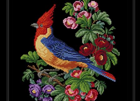 Floral  Woodpecker