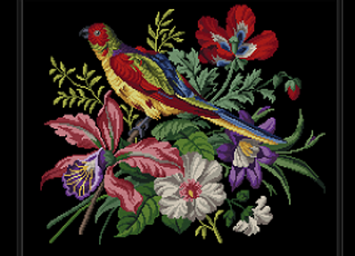 Orchid, Weasel on the Parrot