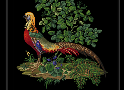 Antique Berlin Golden Pheasant