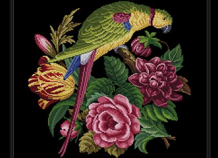 Flower Garden  and Parrot