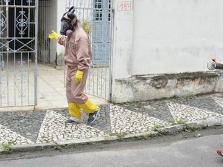 Dengue e chikungunya caíram mais de 90% em Feira de Santana