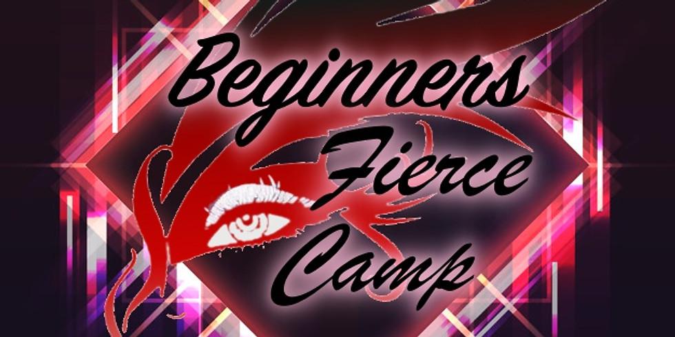 Beginners Bachata Ladies Class