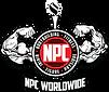 NPC-Worldwide-Logo-1024x859.png