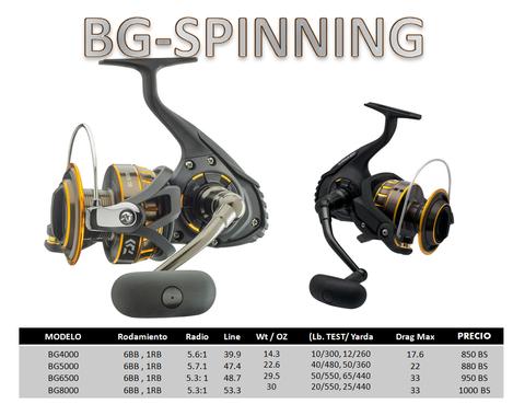BG SPINNING NEW.png