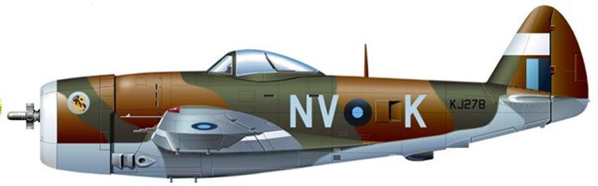 79 Sqdn Thunderbolt Profile.jpg