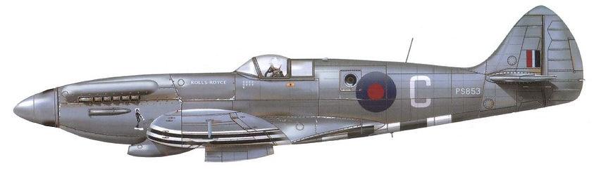 16 Sqdn Spitfire.jpg