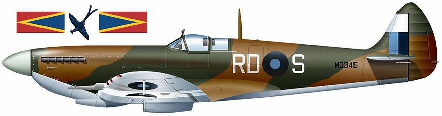 67 Sqdn Spitfire.jpg