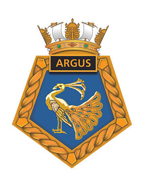 Argus Peacock.jpg