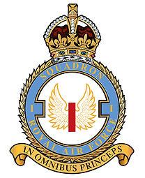 1 Sqdn Badge RAF.jpg