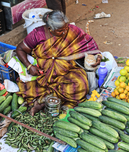 The vegetiable seller and her cat