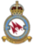 46 Sqdn Badge.jpg