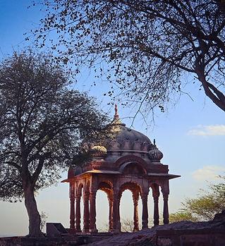 Jodhpur Antiquity.jpg