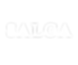 Logotipo Salga-02.png