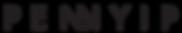 Pennyip_Logo slim.png