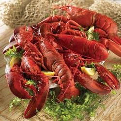Steameded Lobsters