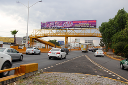 Puente Salvador Nava 5 de mayo