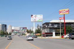 Chapultepec - Roble