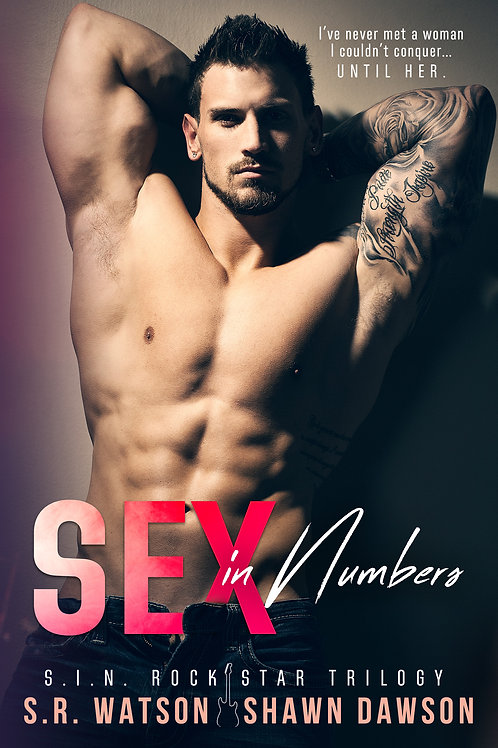 Sex in Numbers (S.I.N. Rock Star Trilogy) # 1