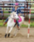 Sports Photography Thunder Bay, ON, Lakehead Light Horse Association