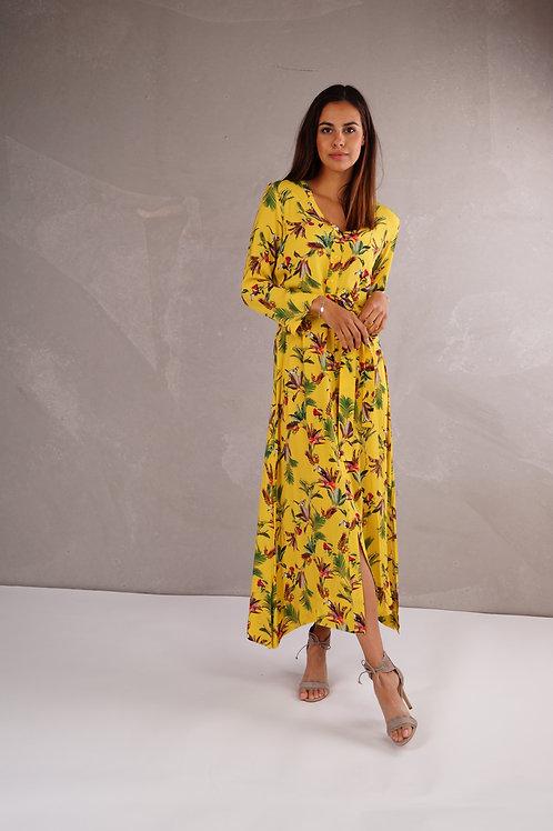 Aurelia - Cayenne Col.Yellow