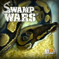 Swampwars