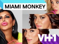 Miami Monkeys