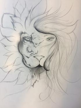 Lioness tekening