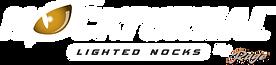 Nockturnal Logo_White2.png