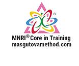 MNRI Logo.png