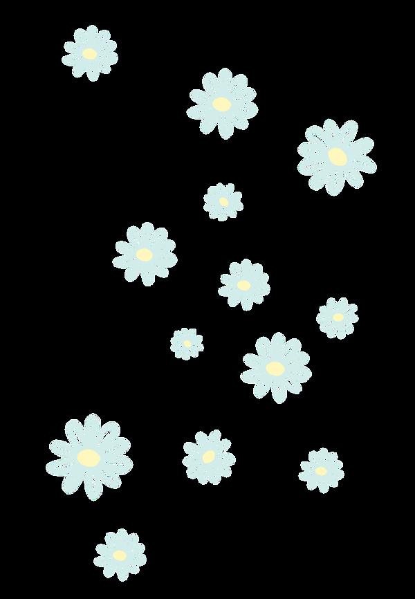 daisyhintergrund.png