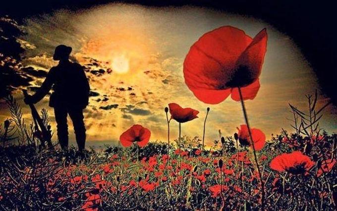Poppy soldier.jpg