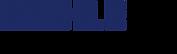 Mahle_logo.svg_.png