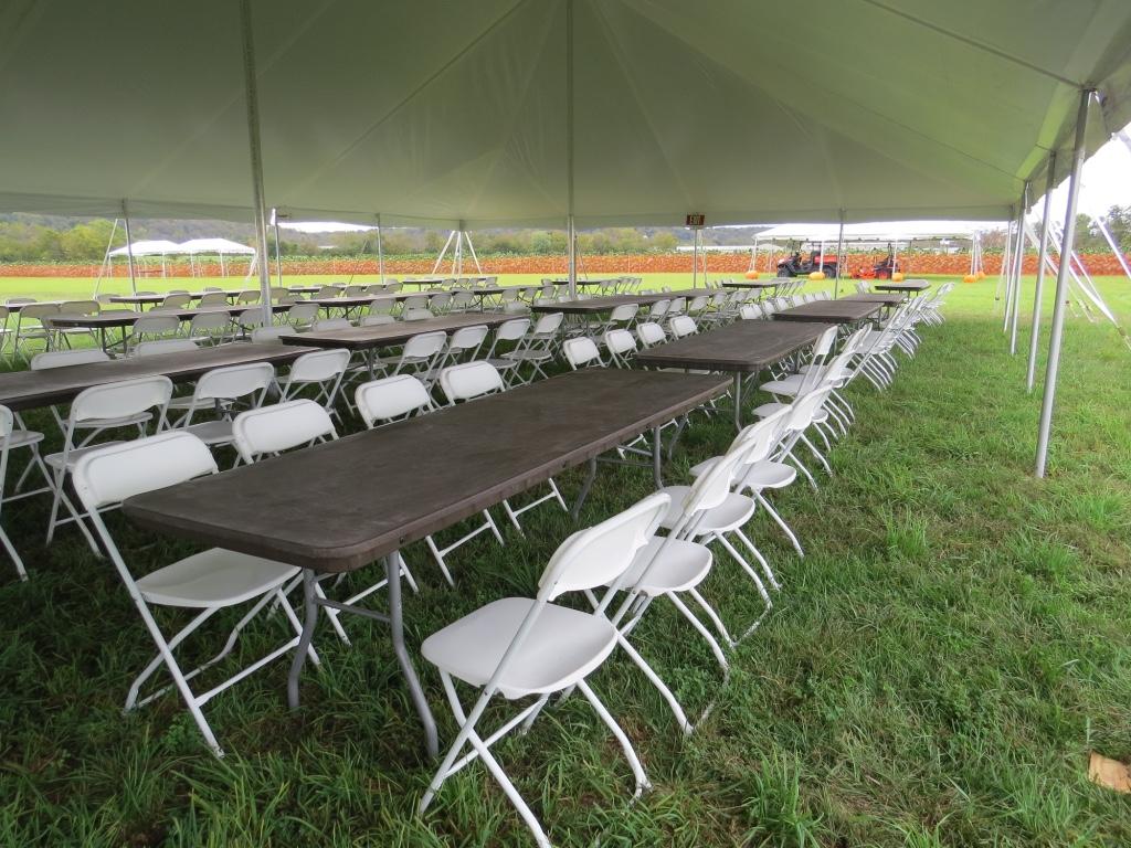Festival Set Up