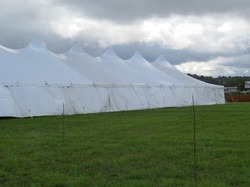 Pole Tent with White Sidewall