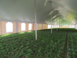 Pole Tent Inside View