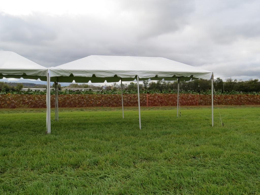 frame-tent-rentals-cincinnati