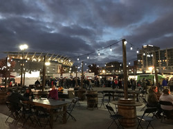 Carousel Lights & Vineyard Set Up