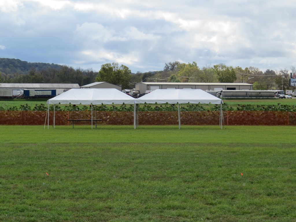 Side by Side Frame Tents