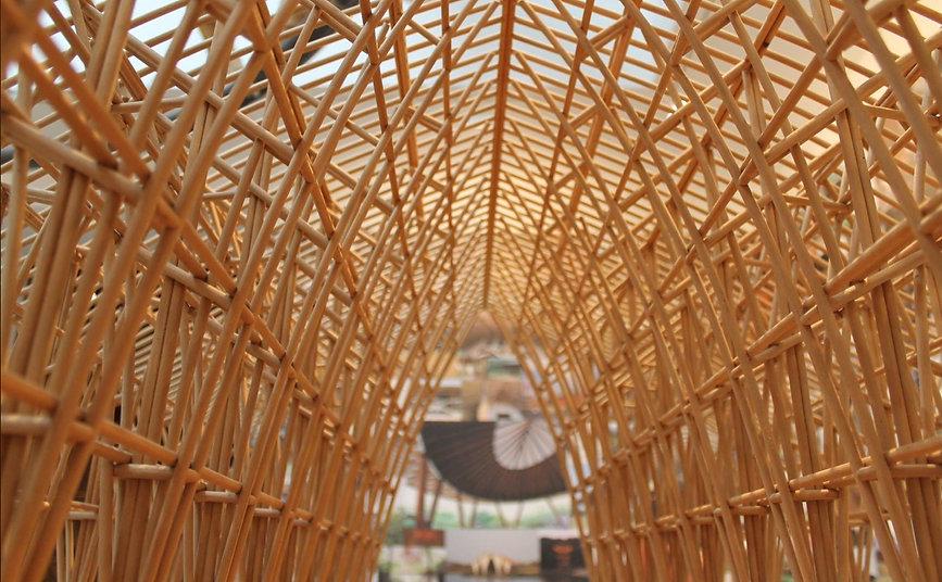 bambu_edited.jpg