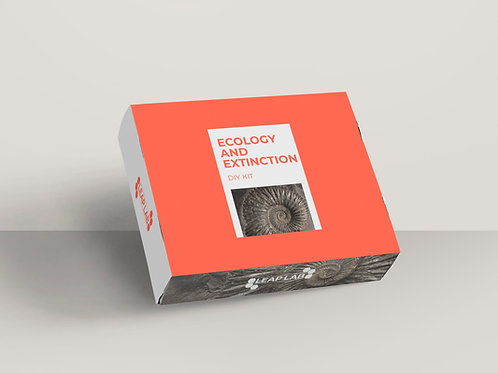 Ecology DIY kit