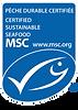 MSC_V3.png