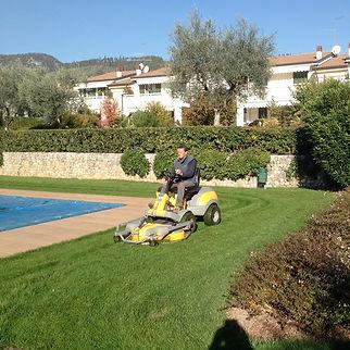 taglio erba e potatura.jpg