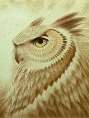 - Moon Owl -