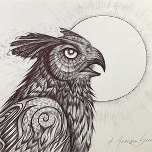 - Owl ink sketch -